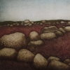 barrens_wall
